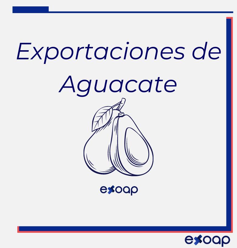 Mercados Internacionales para Aguacate - exoap